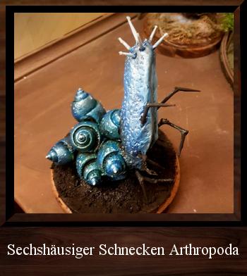 Sechshäusiger Schnecken Arthropoda